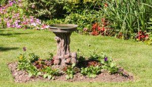 Birdbath with standing water
